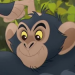 File:Chimpanzees-profile.png