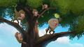 Baboons (145).png