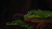 Let-sleeping-crocs-lie (25)