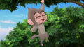 Baboons (255).png
