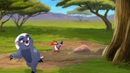The-lost-gorillas (18)