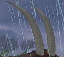 Antilope noire 1