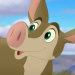 Aardvarks-profile