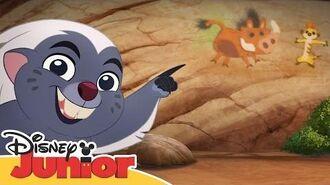 Lejonvakten sjunger Stå upp, stick ut - Disney Junior Sverige