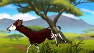 The-imaginary-okapi (415)