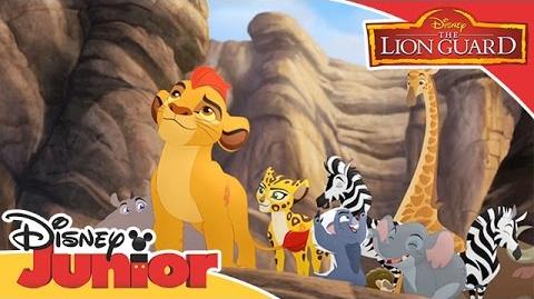 Here Comes the Lion Guard/International