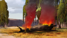 The-kilio-valley-fire (14)