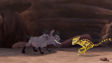 The-zebra-mastermind (526)
