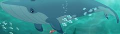 Whales-TLG