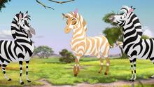The-golden-zebra (251)
