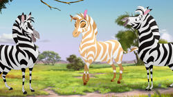 The-golden-zebra (251)