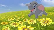 Follow-that-hippo (188)