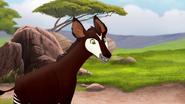 The-imaginary-okapi (71)
