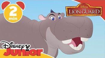 """The Lion Guard Music video """"Sono sempre ottimista"""" - Disney Junior Italia"""