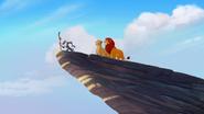 Return-of-the-Roar (217)