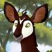 Okapis-profile