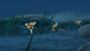 Beware-the-zimwi-hd (222)