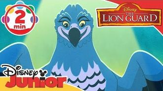 The Lion Guard A Real Meal Song! Disney Junior UK