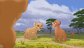 Baboons (16).png