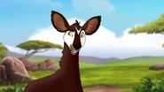 The-imaginary-okapi (60)