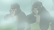 The-lost-gorillas (285)