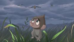 Baboons (34)