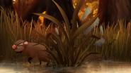 Marsh-of-mystery (493)