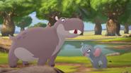 Follow-that-hippo (195)