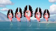 Go-Go-Flamingo