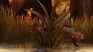 Marsh-of-mystery (491)