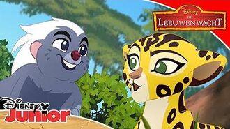 De Leeuwenwacht Liedje Bevriend voor Altijd Disney Junior BE
