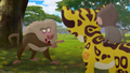 Baboons (131).png