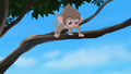 Baboons (254).png