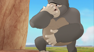 The-lost-gorillas (150)