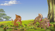 The-traveling-baboon-show (368)