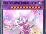 Odd-Eyes Venom Dragon - Bloom