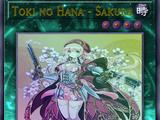 Toki no Hana - Sakura