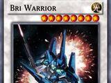 Bri Warrior