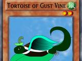 Tortoise of Gust Vine