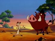 DOA Timon & Pumbaa13