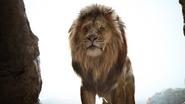 Lionking2019-animationscreencaps.com-757