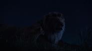Lionking2019-animationscreencaps.com-3764