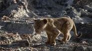 Lionking2019-animationscreencaps.com-2917