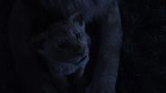 Lionking2019-animationscreencaps.com-3813