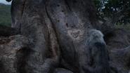 Lionking2019-animationscreencaps.com-5959