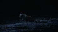 Lionking2019-animationscreencaps.com-7541