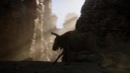 Lionking2019-animationscreencaps.com-5167