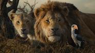 Lionking2019-animationscreencaps.com-10916