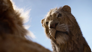 Lionking2019-animationscreencaps.com-5059