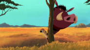 Lion-king2-disneyscreencaps.com-3527